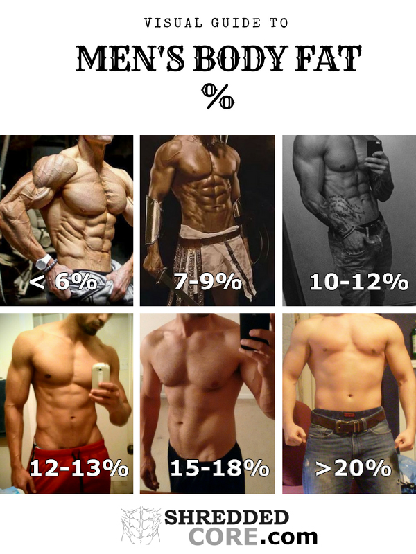 Everything You Need To Know About Body Fat Percentage - ShreddedCore