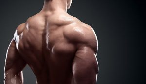 The 4 Best Exercises For Bigger Traps